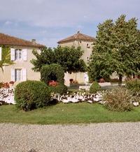 TERRE BLANCHE - Saint-Puy