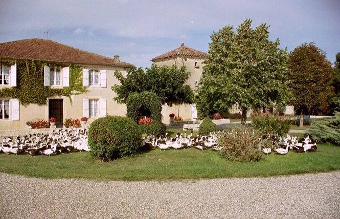 AUBERGE DE TERRE BLANCHE 2 - Saint-Puy