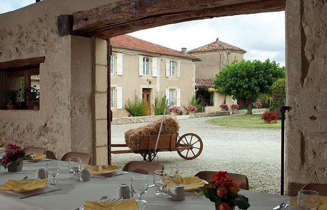 TERRE BLANCHE 7 - Saint-Puy