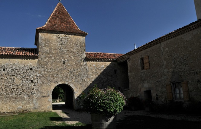 LA DAME DE COURTIES 1 - Saint-Puy