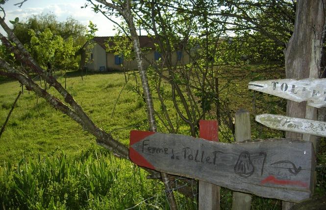 FERME DE TAULET - GÎTE D'ETAPE 1 - Larressingle