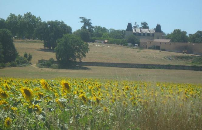 CAMPING LES ALISIERS 12 - Valence-sur-Baïse